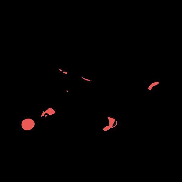ボールで遊ぶ耳の赤い猫
